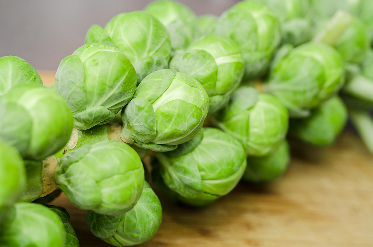 sprouts_1200pxl